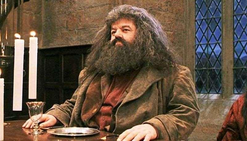 Entenda doença que estaria fazendo ator que viveu Hagrid usar cadeira de rodas